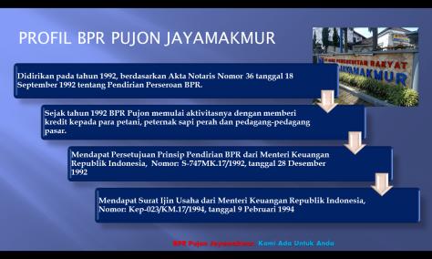 profil legal pjm